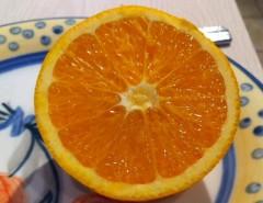 Vendo naranjas de exportación realmente dulces y jugosas! Ma, usado segunda mano  Chile