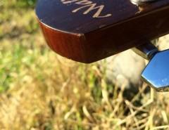 Guitarra Electroacustica Walden D350CE segunda mano  Chile